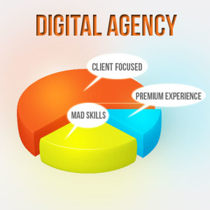 digital-agency-Piechart-300x300