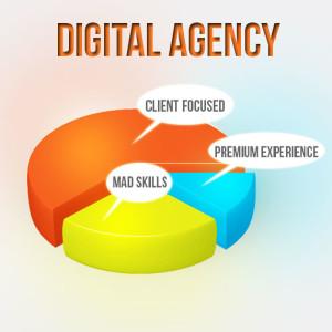 digital-agency-Piechart-300x300
